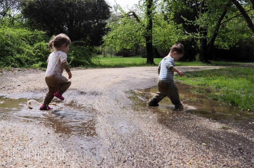 mud day-1