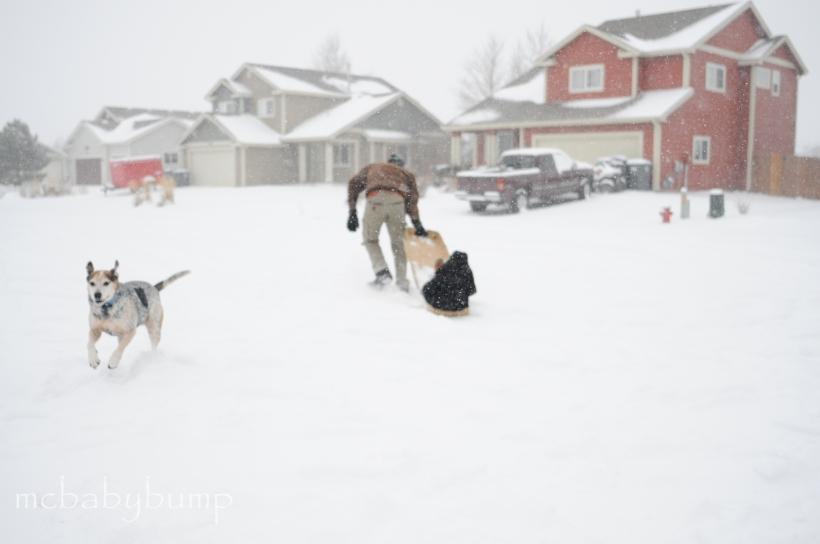snow-day-13
